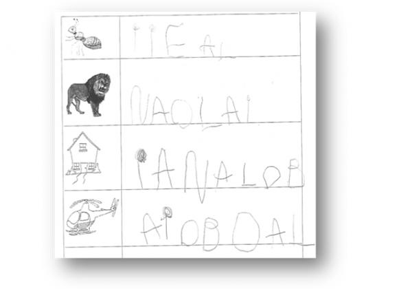 kit pedagogique Décolage - D3 - prod stefan